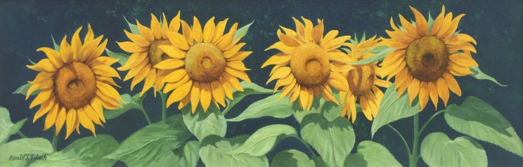 SUNFLOWERS IN A ROW – Tilting at Wildmills Gallery
