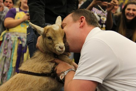 Mr. Day kisses a goat during the Feb. 13, 2015 pep rally. (Photo by The Creek Yearbook photographer Sabrina Trejo)
