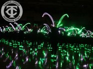 abarber-lightsout2