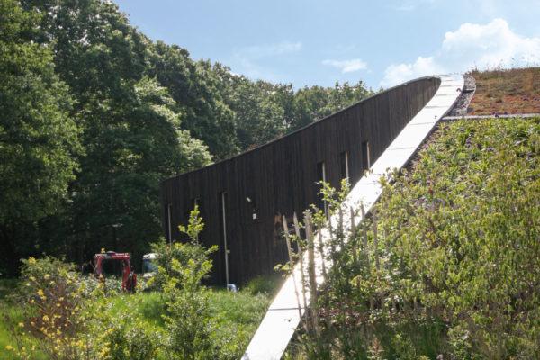 Profil du bâtiment - Vue du vignoble