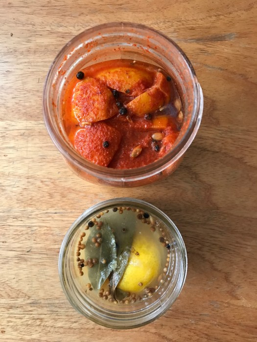 preserved lemons and spicy preserved lemons with korean gochujang