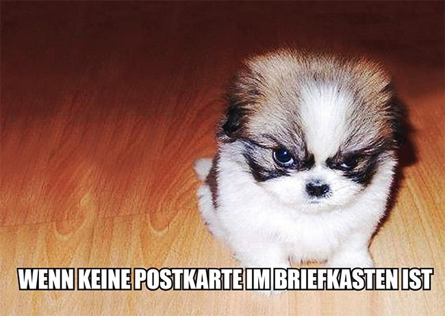 Schwarzer Humor 02
