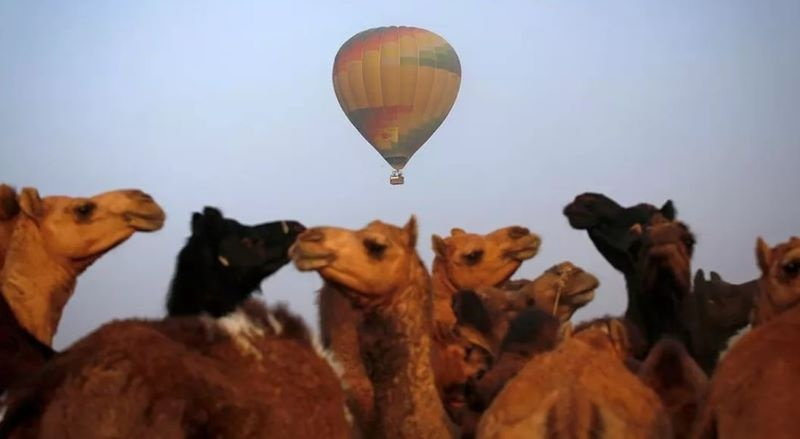 Time travelling camel superseded by hot air balloon