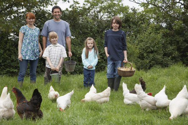 Memorable Birthday Party - Parents with three children (5-9) feeding hens in garden portrait