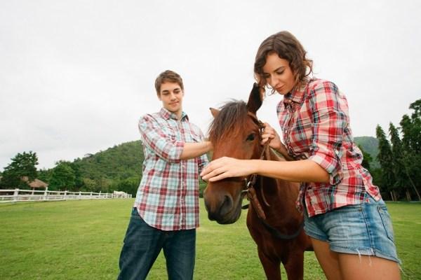 Teamwork - Couple with Horse on Farm