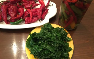 Ten Minute Southern Pepper Sauce Gives Greens A Little Kick!