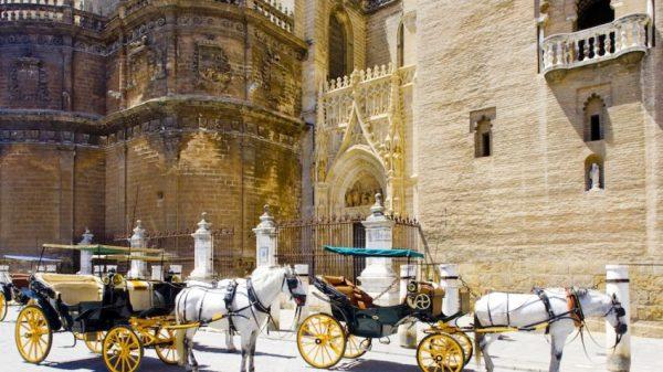 coches de caballo