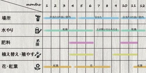 schedule_Echeveria