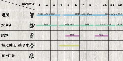 schedule_Senecio