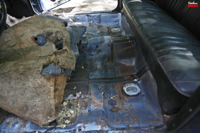 Peeling back the factory carpet and sound deadening revealed the original Astro Blue hue the car was painted when it rolled off the assembly line some 37 years ago.