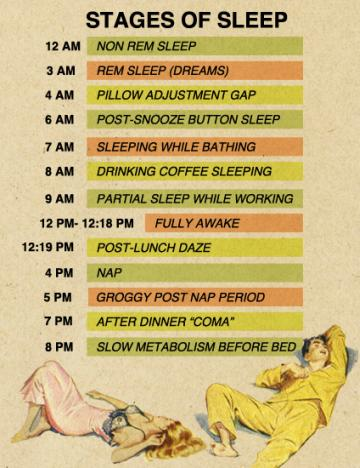 Stages Of Sleep Diagram