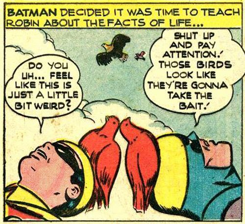 """Batman decided it was time to teach Robin about the facts of life..."""