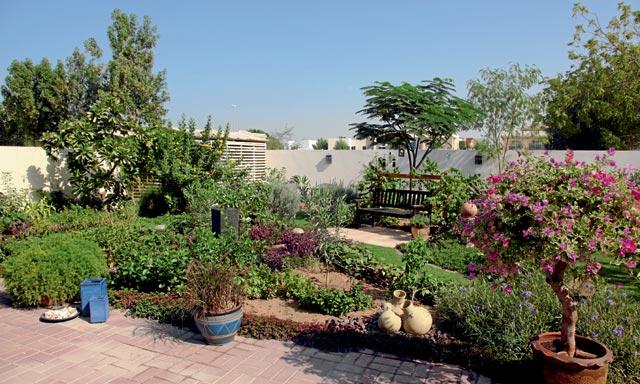 Grow Your Garden In Dubai Things To Do Time Out Dubai