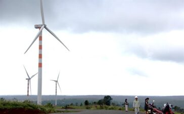 Business2 hours ago  Đắk Lắk approves two wind-power plants, worth $96 million