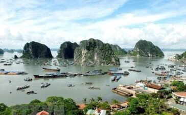 "Travel4 hours ago  Ha Long Bay-Cat Ba Archipelago to seek world heritage recognition Deputy PM Vu Duc Dam has assigned relevant agencies to take necessary steps in submitting dossiers seeking UNESCO's recognition of ""Ha Long Bay-Cat Ba Archipelago"" as a World..."