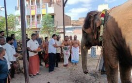 Beaten elephant sent back to Srivilliputhur temple from Thekkampatti camp