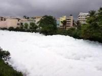 14-Year-Old Takes Initiative To Save Bellandur Lake In Bangalore