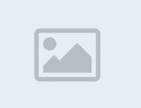 Old Red Cow