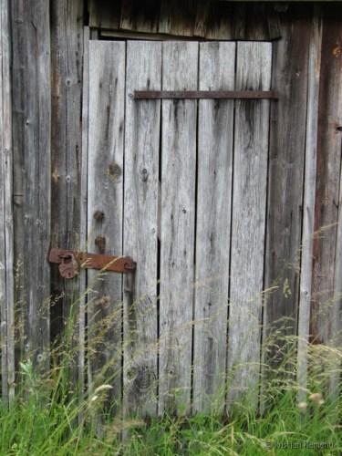 vana kalurikuur