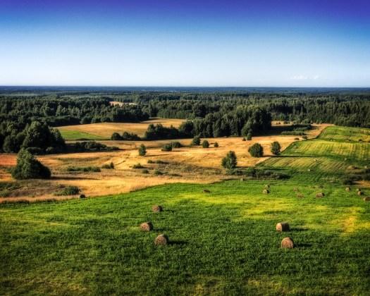 Pilguheit eesti maastikule