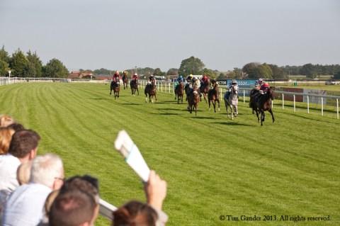 Horses racing the final furlong at Bath Racecourse