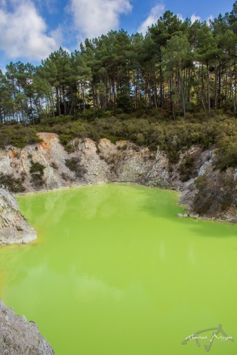 Devil's Bath Wai-o-Tapu Rotorua