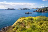 Moturua Island à la Bay of Islands