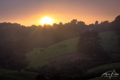 HelpX vers Auckland - Lever de soleil