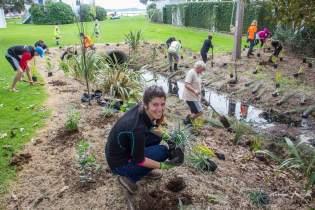 HelpX vers Auckland - Plantations