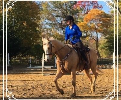 Harmony Horsemanship