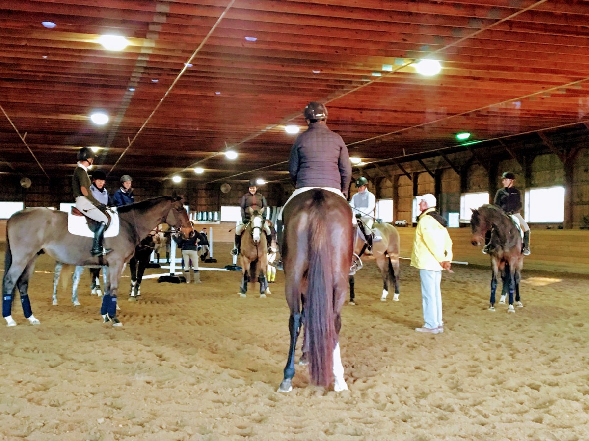 Informative Riding Clinic with Olympic Show Jumping Medalist