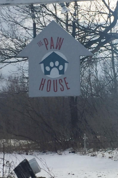 Guest Post: Dogcation Vermont, The Paw House Inn