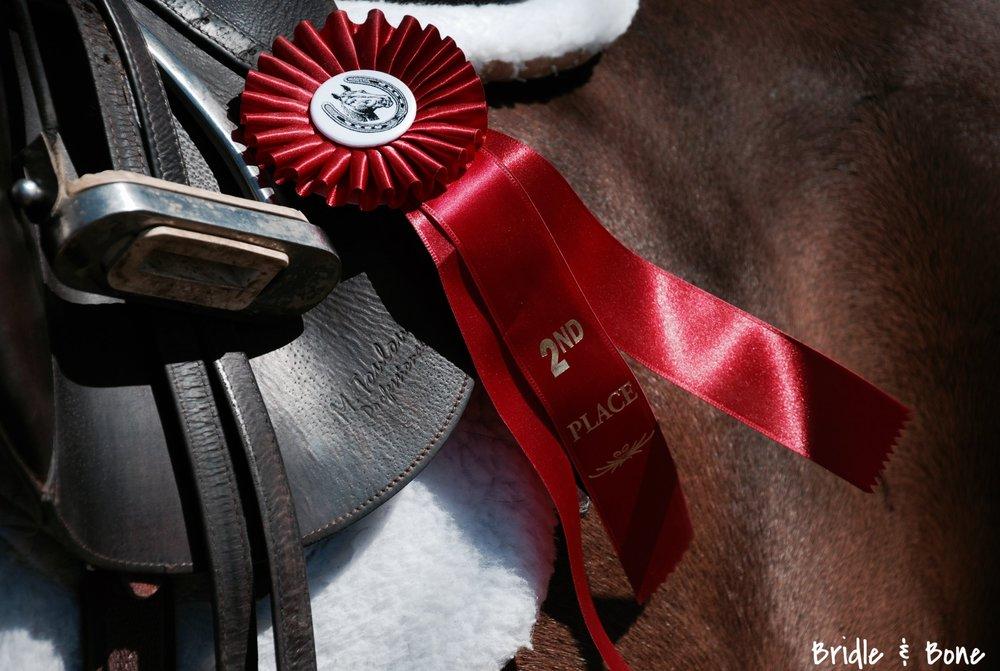 Horse Show Season Has Begun Beautifully