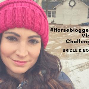 #horsebloggers vlog challenge
