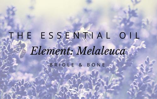Essential Oil Melaleuca