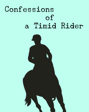 Confessions of a Timid Rider