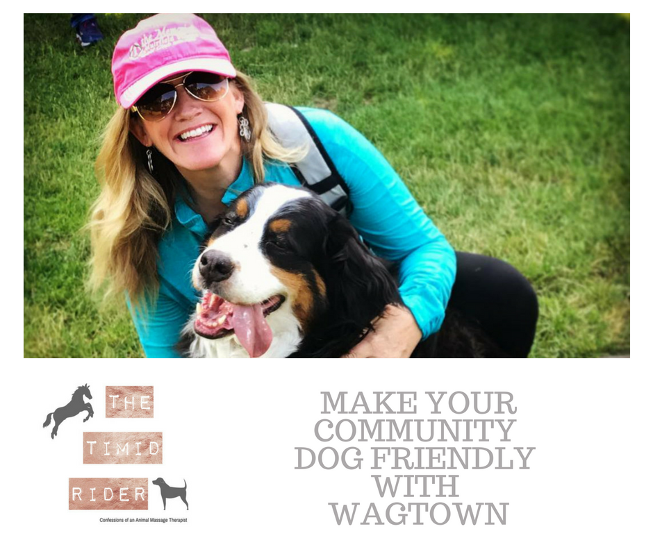 Make Your Community Dog Friendly with Wagtown's Beth Miller