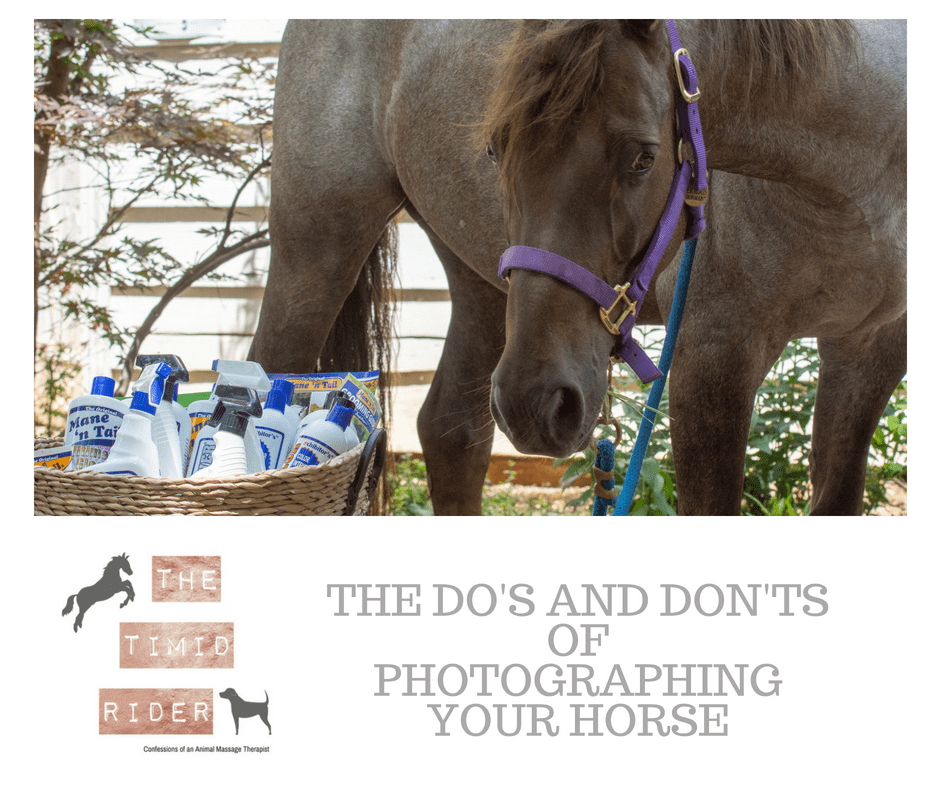 The Do's and Don'ts of Photographing Your Horse