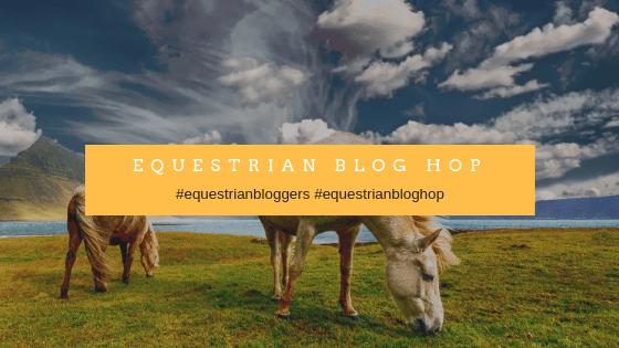 Equestrian Blog Hop The Timid Rider