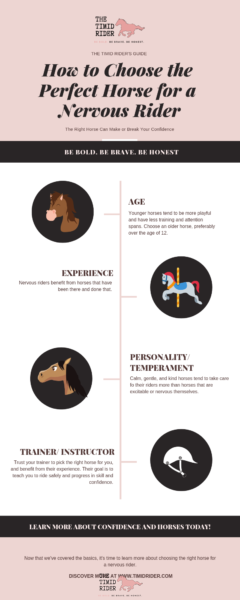 Perfect Horse Nervous Rider Infographic