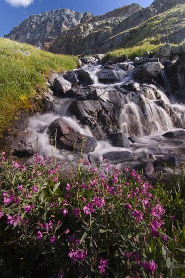 Mtn Creek