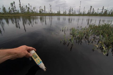 Measurig PH in a pond in the Heart of the Boreal