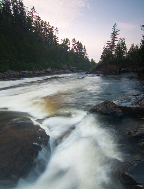 Daybreak in the boreal forest of Quebec