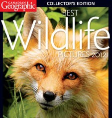 Captive wildlife and Canadian Geographic's Best Wildlife Photos 2012.