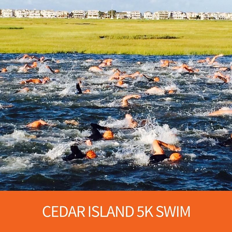 Cedar Island 5K Swim - Tim Kerr Charities
