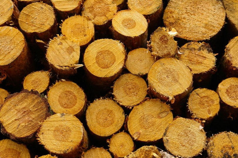 Baumstapel