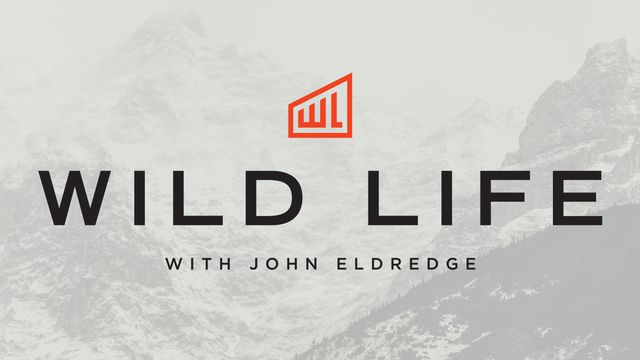 Wild Life: No One Gets The Master Plan, And No One Is Perfect