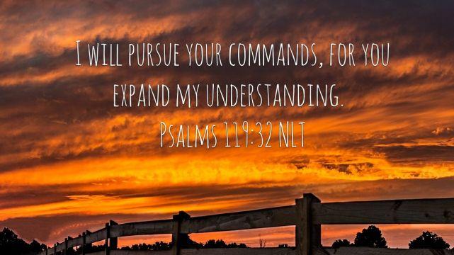 The Pursuit Of Understanding