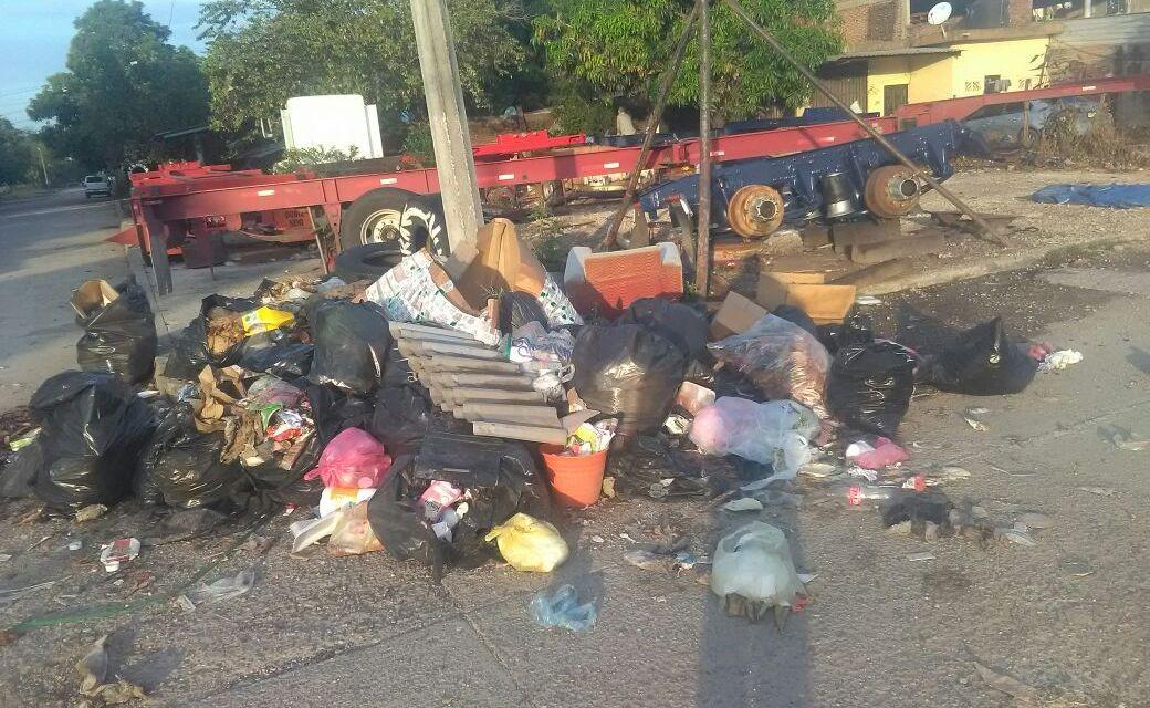 Recolección de basura es ineficiente en colonias de la tenencia Las Guacamayas