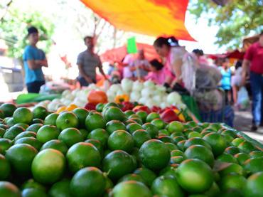 Alza de precios en canasta básica y desempleo; los daños y efectos de la promulgación de ZEE